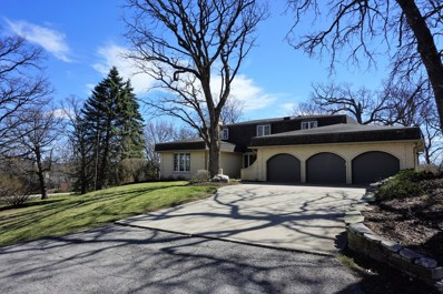 3919 Red Bud Court, Crystal Lake, IL 60012 - #: 10381408