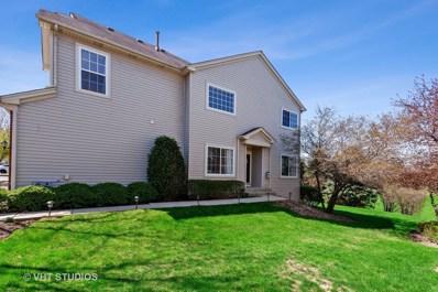 324 Abington Woods Drive UNIT 324, Aurora, IL 60502 - #: 10381436