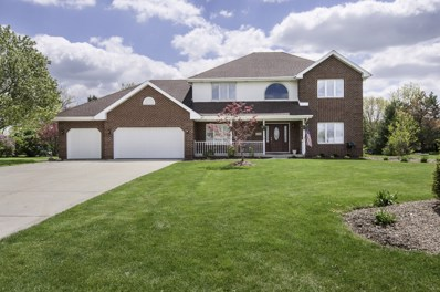 14321 Summerfield Drive, New Lenox, IL 60451 - #: 10381807