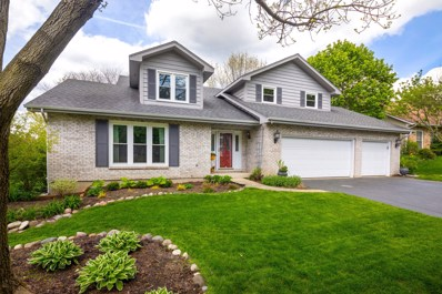 1363 Deep Run Road, Naperville, IL 60540 - #: 10381954