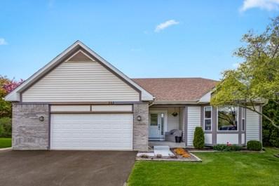 202 Switchgrass Drive, Round Lake, IL 60073 - #: 10383162