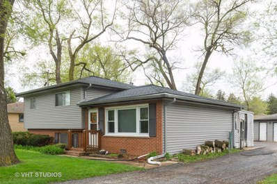 454 S Villa Avenue, Addison, IL 60101 - #: 10383623