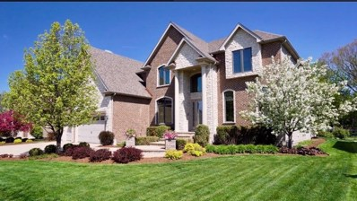 1971 Saddle Farm Lane, Naperville, IL 60564 - #: 10383655