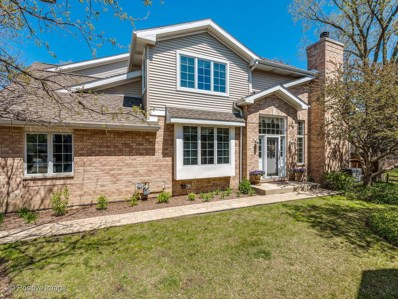 1763 Park Ridge UNIT 1763, Park Ridge, IL 60068 - #: 10384003