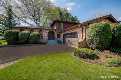 6336 Hampshire Court, Lisle, IL 60532 - #: 10384536