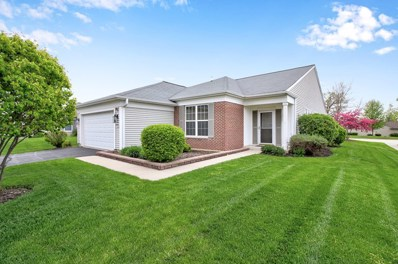 13117 Silver Birch Drive, Huntley, IL 60142 - #: 10384665