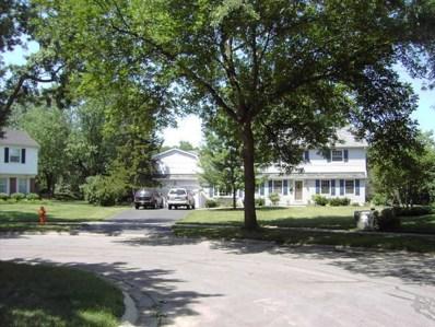 1121 Birkdale Court, Naperville, IL 60563 - #: 10385509