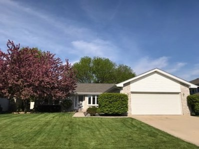 61 Whitewater Court, New Lenox, IL 60451 - #: 10385806
