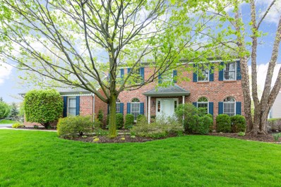 2507 Indian Grass Court, Naperville, IL 60564 - #: 10386970