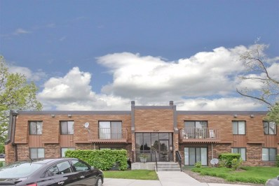 737 Limerick Lane UNIT 2A, Schaumburg, IL 60193 - #: 10388626
