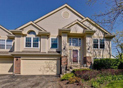 610 Stone Brook Court, Elk Grove Village, IL 60007 - #: 10389104