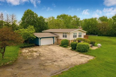 12120 Pleasant Valley Road, Woodstock, IL 60098 - #: 10389553