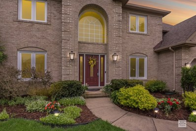 1411 Frenchmans Bend Drive, Naperville, IL 60564 - #: 10389741