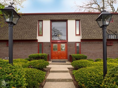 1007 Deerfield Road UNIT 226, Deerfield, IL 60015 - #: 10389876