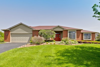790 Dakota Drive, Woodstock, IL 60098 - #: 10390912