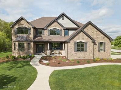 1424 Oak Bluff Lane, Lemont, IL 60439 - #: 10391362