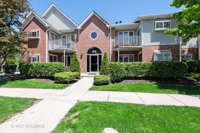 1218 Chalet Road UNIT 102, Naperville, IL 60563 - #: 10391976