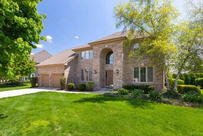 1380 Monarch Circle, Naperville, IL 60564 - #: 10392043