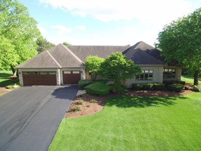 10522 Royal Porthcawl Drive, Naperville, IL 60564 - #: 10392450
