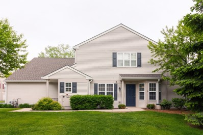 2212 Waterleaf Court UNIT 101, Naperville, IL 60564 - #: 10392657