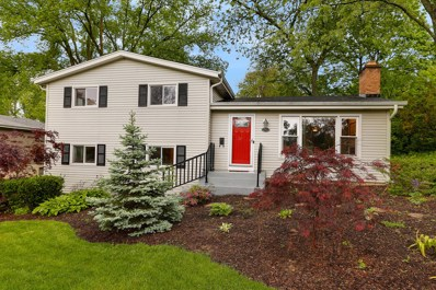 211 N Williston Street, Wheaton, IL 60187 - #: 10392748