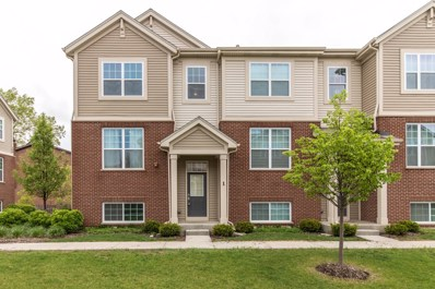 100 S Dee Road UNIT 1, Park Ridge, IL 60068 - #: 10393053