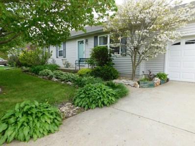 1025 Suzy Street, Lake Holiday, IL 60548 - #: 10393398