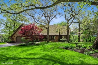 65 Woodberry Road, Deer Park, IL 60010 - #: 10393626