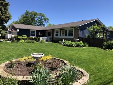 1379 Carlisle Avenue, Elk Grove Village, IL 60007 - #: 10393877