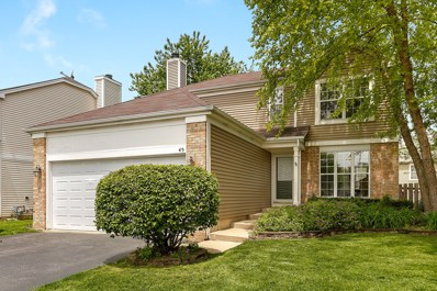 45 Wildflower Way, Streamwood, IL 60107 - #: 10394471