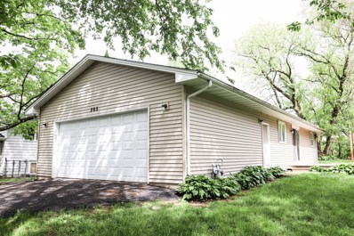 265 Deerpath Lane, Carpentersville, IL 60110 - #: 10395089