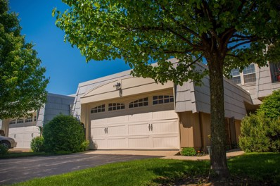 675 Versailles Circle UNIT D, Elk Grove Village, IL 60007 - #: 10395256