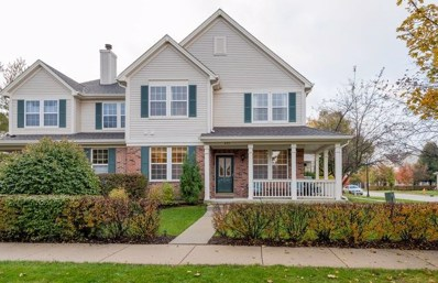 673 W Natalie Lane, Addison, IL 60101 - #: 10395293