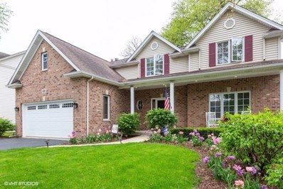 4516 Bryan Place, Downers Grove, IL 60515 - #: 10395498