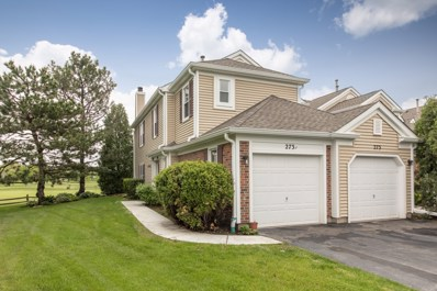 273 Greensboro Court UNIT A, Elk Grove Village, IL 60007 - #: 10395636
