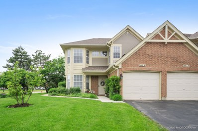 616 Plum Court UNIT B, Crystal Lake, IL 60014 - #: 10395667