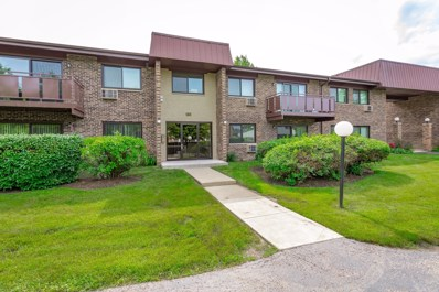 2620 N Windsor Drive UNIT 201, Arlington Heights, IL 60004 - #: 10396225