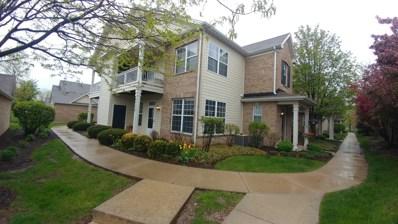 4413 Timber Ridge Court UNIT 1221, Joliet, IL 60431 - #: 10396384