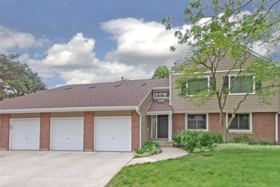 991 Pinetree Circle S UNIT 991, Buffalo Grove, IL 60089 - #: 10396927