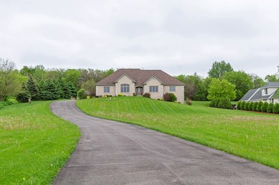 10704 Pebble Drive, Huntley, IL 60142 - #: 10397864