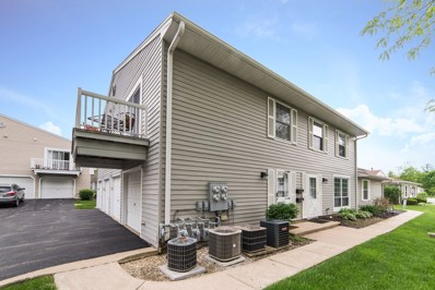 1303 Woodcutter Lane UNIT D, Wheaton, IL 60189 - #: 10398192