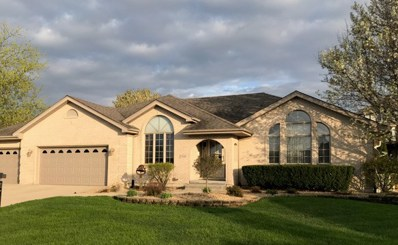 20948 Roscommon Court, Mokena, IL 60448 - #: 10398226