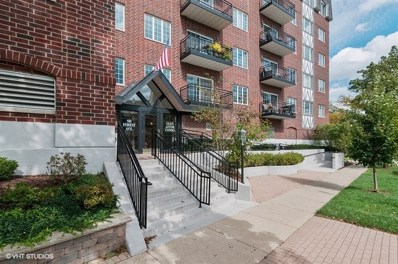 501 Forest Avenue UNIT 407, Glen Ellyn, IL 60137 - #: 10398306
