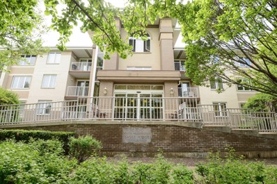 10700 S Washington Street UNIT 104, Oak Lawn, IL 60453 - #: 10399242