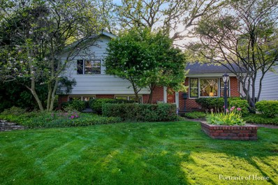 5538 Brookbank Road, Downers Grove, IL 60516 - #: 10399294
