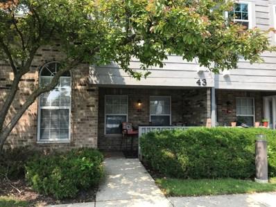 43 Foxcroft Road UNIT 123, Naperville, IL 60565 - #: 10399938