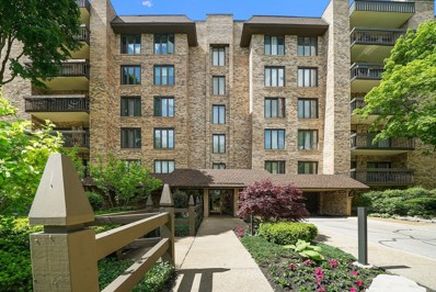 3810 Mission Hills Road UNIT 303, Northbrook, IL 60062 - #: 10400015