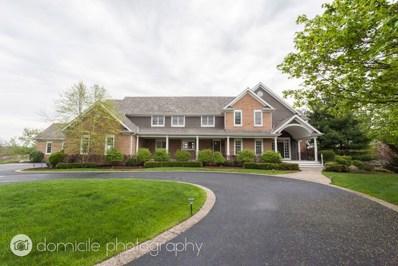 23393 Chesapeake Drive, Lake Barrington, IL 60010 - #: 10400124