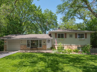 228 41st Street, Downers Grove, IL 60515 - #: 10401668