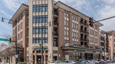 3450 S Halsted Street UNIT 209, Chicago, IL 60608 - #: 10401691